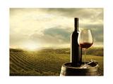 Vineyard At Sunset Reproduction d'art par Stokkete