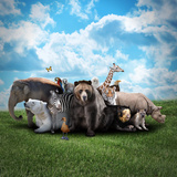Zoo Animals On Nature Background