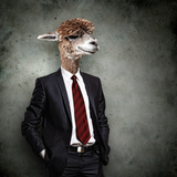 Portrait Of A Funny Camel In A Business Suit