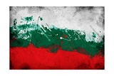 Bulgarian Flag