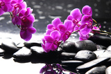 Branch Purple Orchid Flower With Therapy Stones Papier Photo par Crystalfoto