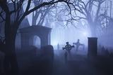 Misty Overgrown Cemetery
