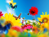 Sunny Garden Of Flowers And Butterflies Colors Of Spring And Summer