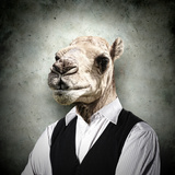 Portrait Of A Funny Camel In A Business Suit On A Gray Background Collage
