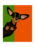 Illustration Of A Happy Playful Dachchund