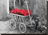 Poinsettia Wagon