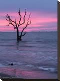 Pink Sunrise Tableau sur toile par Lorraine Shannon