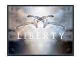 Liberty XI