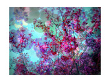 Spring Tree Impression XI