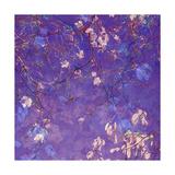 Lilac Tree Impression