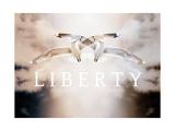 Liberty VII