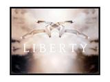 Liberty I
