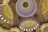 Interior of New Mosque  Istanbul  Turkey
