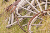 Old Wagon Wheels in Grass  Fort Steele  British Columbia  Canada