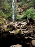 Erskine Falls  Lorne  Victoria  Australia