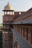 Two Pigeons Sit on the Roof's Ledge  Agra Fort  India