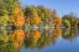 Autumn Color Reflect in Oxbow Lake Wildlife Area  Ohio  USA