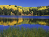 Autumn Scenic at Lost Lake  Gunnison National Forest Colorado  USA