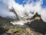 Mount Kenya  Mount Kenya National Park  Kenya