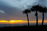 Sarasota  Sunset on the Crescent Beach  Siesta Key  Florida  USA