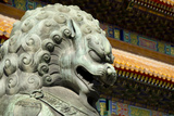 Bronze Lion Statue  Forbidden City  Beijing  China