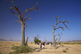 Breakfast after Hot Air Balloon Flight  Namib Desert  Namibia