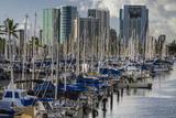 Docked Sailboats in Ala Wai Harbor  Honolulu  Hawaii  USA