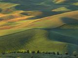 Steptoe Butte  Palouse  Whitman County  Washington  USA
