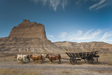Pioneer Wagon Train Replica  Scottsbluff  Nebraska  USA