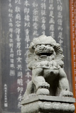 Stone Lion Statue  Jade Buddha Temple  Shanghai  China
