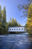 Goodpasture Covered Bridge  Mckenzie River  Lane County  Oregon  USA