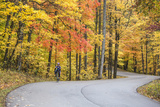 Road Bicycling in Autumn at Brown County State Park  Indiana  USA