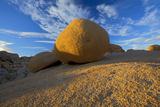 Granite Formation  Joshua Tree National Park  California  USA