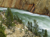 The Yellowstone River  Yellowstone National Park  Wyoming  USA