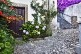 Street Along Obidos  Leiria  Portugal