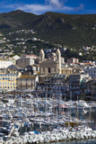 The Old Port  Elevated View of the Old Port  Bastia  Corsica  France