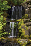 Waterfall  Crystal Springs Rhododendron Garden  Portland  Oregon  USA