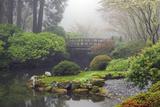 Moon Bridge on a Foggy Day  Portland Japanese Garden  Oregon  USA