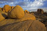 Wonderland of Rocks  Joshua Tree National Park  California  USA