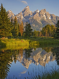 Grand Teton National Park  Wyoming  USA