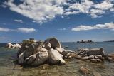 Plage De Palombaggia Beach  Porto Vecchio  Corsica  France