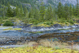 Scenic View of Ford's Terror  Tongass National Forest Alaska  USA