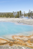 Biscuit Basin  Yellowstone National Park  Wyoming  USA
