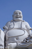 Big Happy Buddha Statue  My Tho  Vietnam