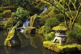 Portland Japanese Garden in Spring  Portland  Oregon  USA
