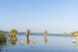 Lake Balaton  Tihany  Hungary