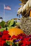 Fall Pumpkin and Us Flag  Schopf's Hilltop Dairy  Wisconsin  USA