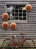 Sun Masks and Bicycle  Wiscasset  Maine  USA