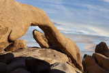 View of Arch Rock  Joshua Tree National Park  California  USA