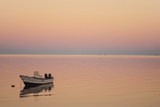 Pink Sunrise with Small Boat in the Ocean  Ifaty  Tulear  Madagascar